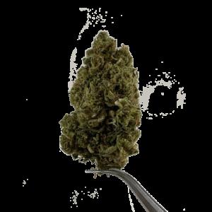 Premium Hemp Flower - greencrack delta8