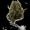 Premium Hemp Flower - whitewidow